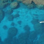 Snorkelling (helicopter view)